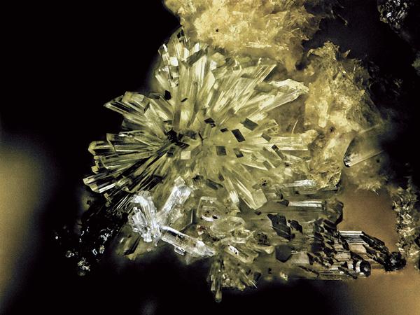 Uroxite